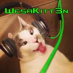 View WesaKITT3N's Profile