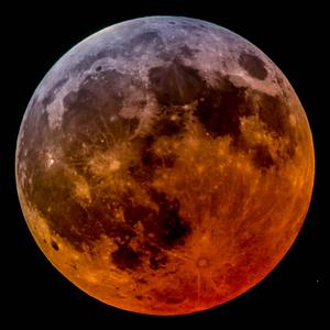 View Eclipse222's Profile