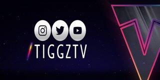 Profile banner for tiggztv