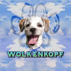 WolkenKopfDE Logo