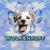 avatar for wolkenkopfde