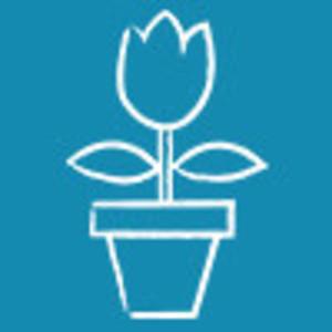 jimmy_dietulpe Logo