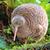 View kiwiiiiithebird's Profile