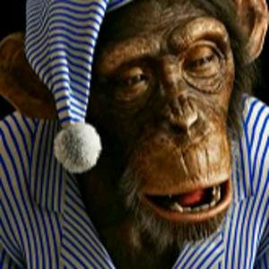 Affe_im_Pyjama Logo