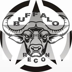 Buffalo_Recon Logo
