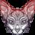JiloOziris's avatar