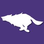 Viking_violet