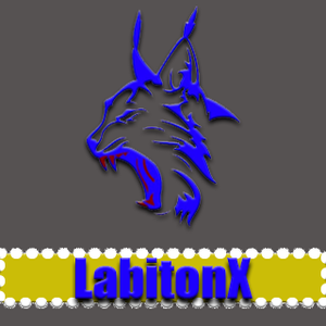 LabitonX