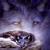 View scail_sionnach's Profile