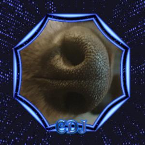 cosmodj_cdj Logo
