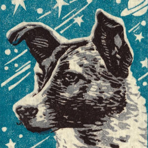 Laika's profile picture
