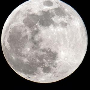 Moonstrike306 Logo