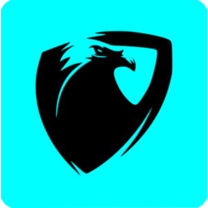 hawkeye_dp Logo