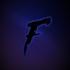 View Falsus_TTV's Profile