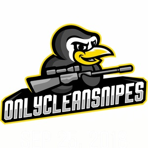 onlycleansnipes on Twitch