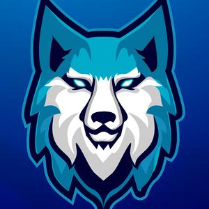 DROIMAN Logo