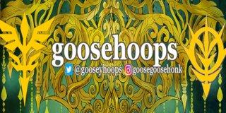 Profile banner for goosehoops
