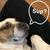 Cappy_Cappy