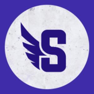 TheSpandex Logo