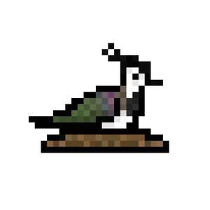View javaraptor's Profile