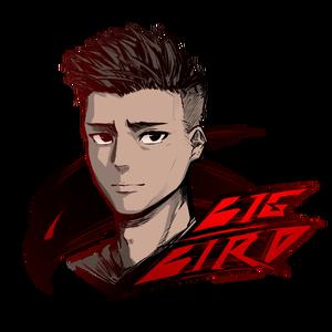 bigbird_tw