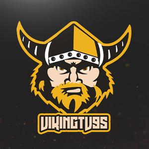 VIKINGTV95 Logo