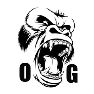 ordinarygamer1999 Logo