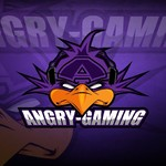 View stats for xAngryGaming