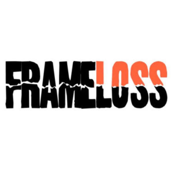 FrameLoss