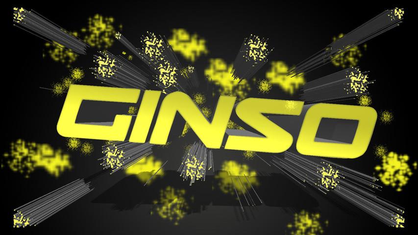GinsoR1