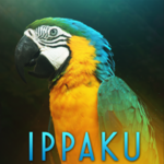 View stats for ippaku