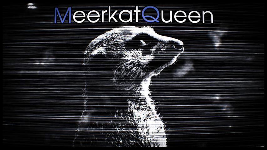 meerkatqueen-profile_banner-68c6728ba275