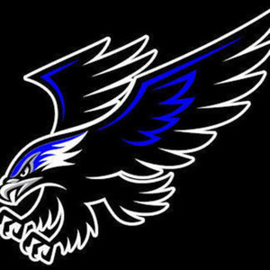 Nighthawks24 - Twitch