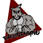View stats for R4ginRhyn0