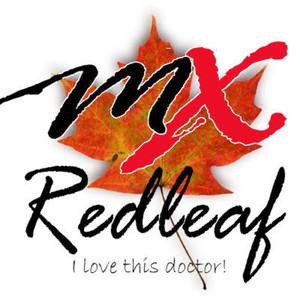 紅葉 Logo