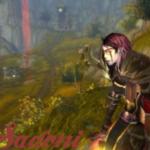 View stats for sadoni