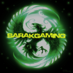 View stats for sarakgaming