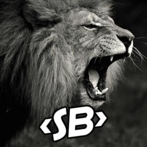 skybeasty Logo