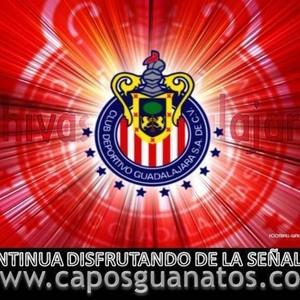 caposguanatos