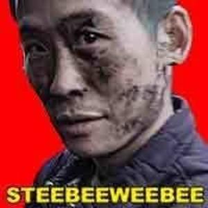 Steebeeweebee profile image e40ec234943efe9b 300x300