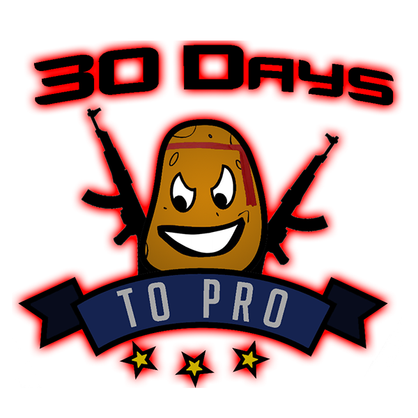 #30DaysToPro Twitch team avatar