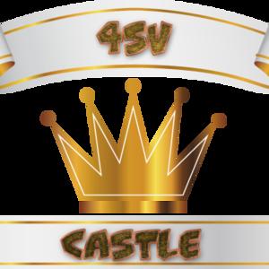 4SV Castle Twitch team avatar
