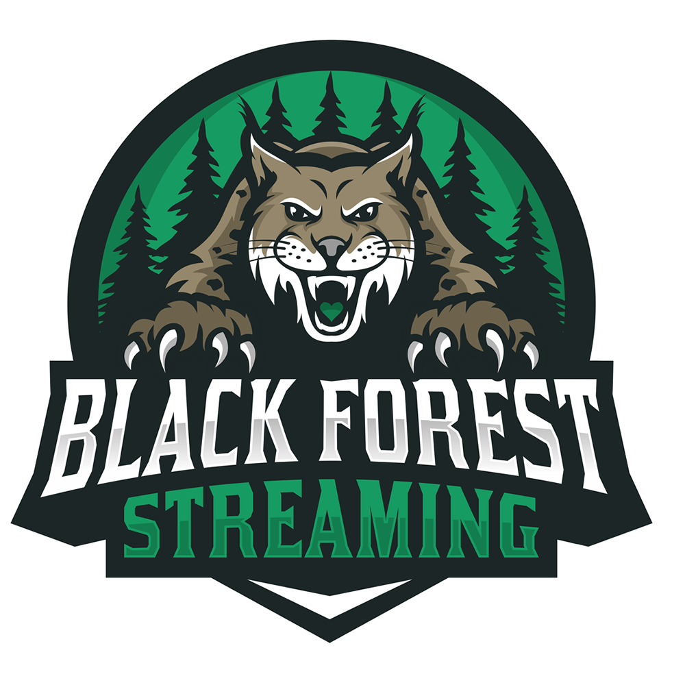 Black Forest Streaming Twitch team avatar