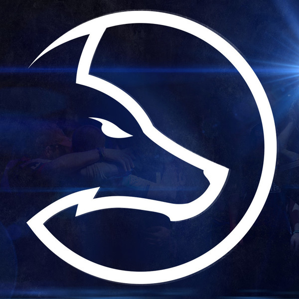 Team LDLC's Avatar