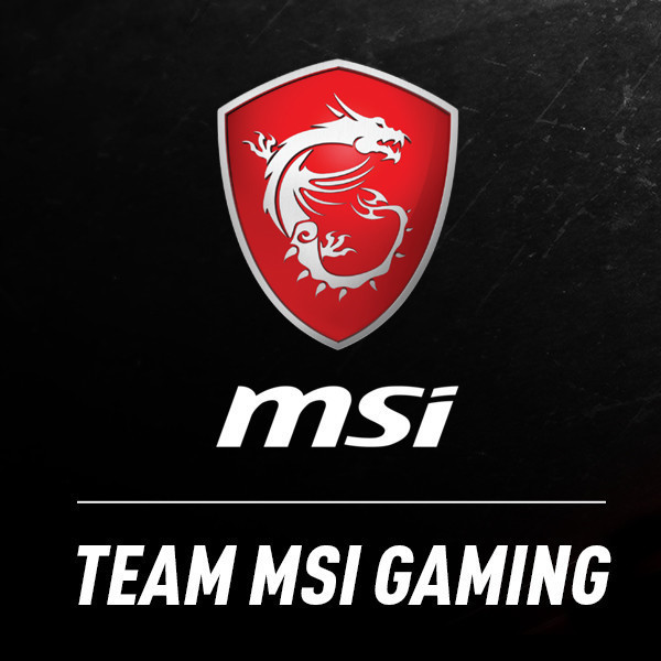 View stats for MSI Gaming