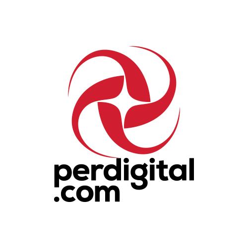 View stats for Perdigital.com