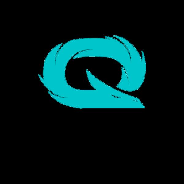 Team QLASH