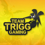 View stats for TeamTrigg