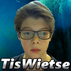 TisWietse - Twitch