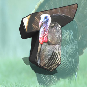 turkey2044
